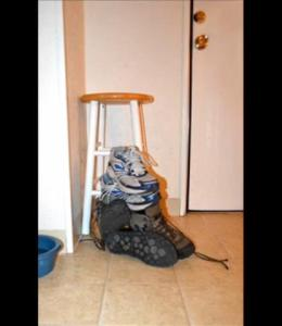 THREAT Against David Dees (Email Received Nov 20th)
